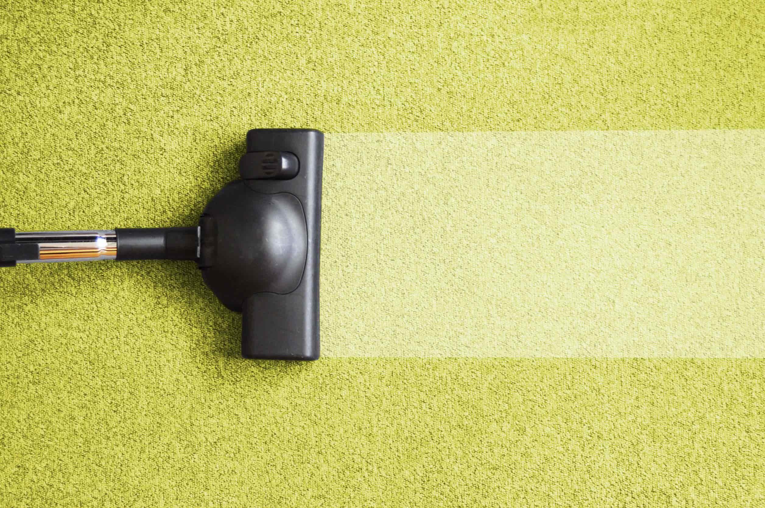 The Best Carpet Cleaner