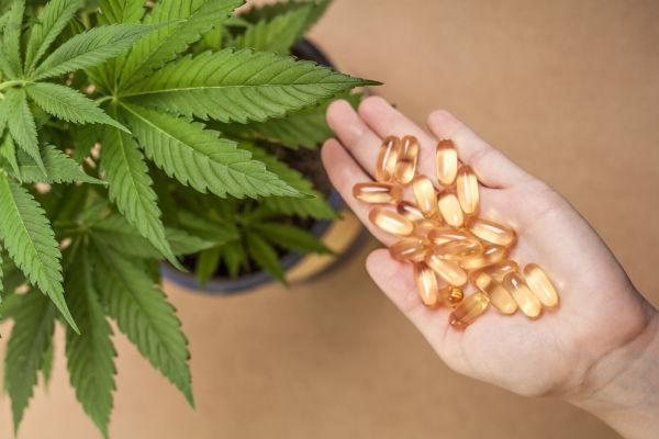 Best Place to Buy Medical Marijuana in Orange County