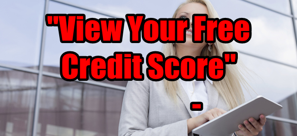 Fast Online Credit Report