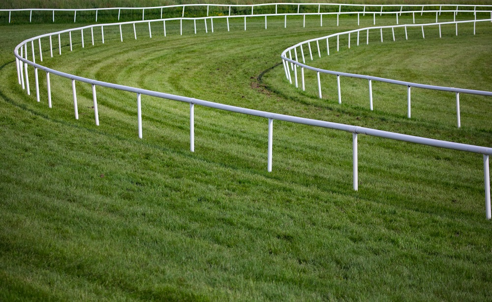 Factors To Consider While Installing Horse Track Railings