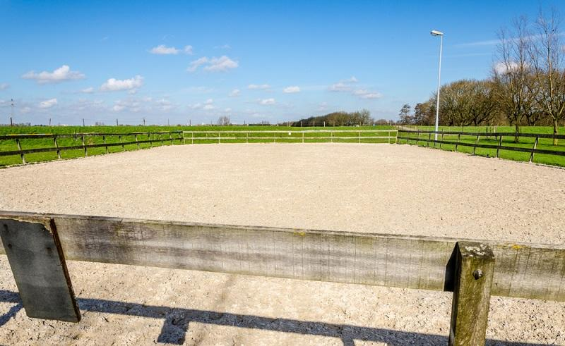Guideline to Build the Perfect Horse Arena Construction