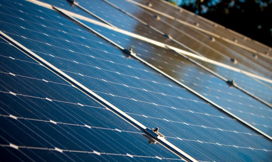 Solar Panels are what best for your Electricity Needs